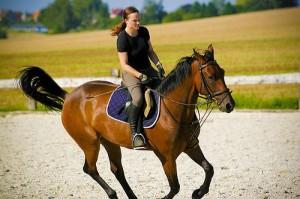 Оценка подготовленности всадника и лошади